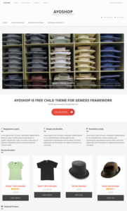 Ayoshop Theme Screenshot