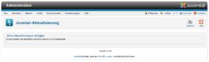 Joomla - Aktualisierung - Optionen