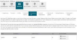 Abbildung - Domain für SSL-Zertifikat auswählen