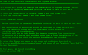 Screenshot: Plesk-Autoinstaller 1