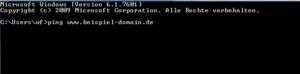 Beispiel-Kommanozeile PING_Beispieldomain