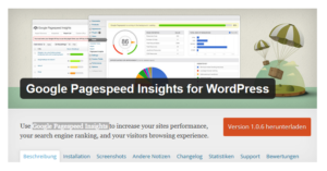 Abbildung - Google Pagespeed Insight