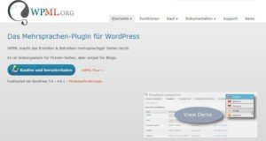 Abbildung-WPML-ORG