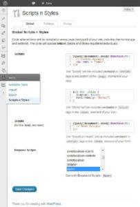 Abbildung 1: Mit dem Plugin Scripts n Styles ermöglichen Sie das Einbinden von Skripten