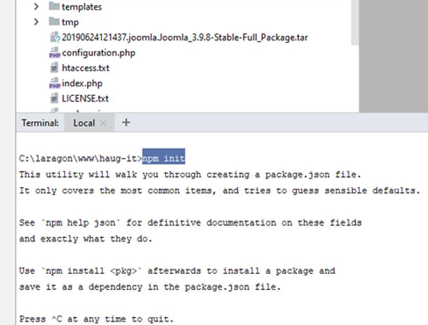 Abbildung 24 - Befehl NPM_Init