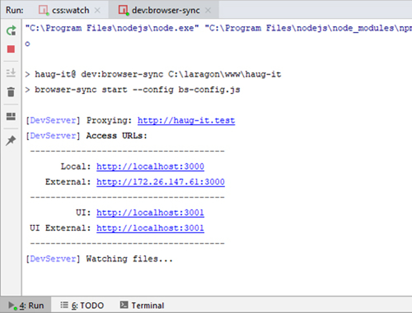 Abbildung 39 - NPM_BrowserSyncStart