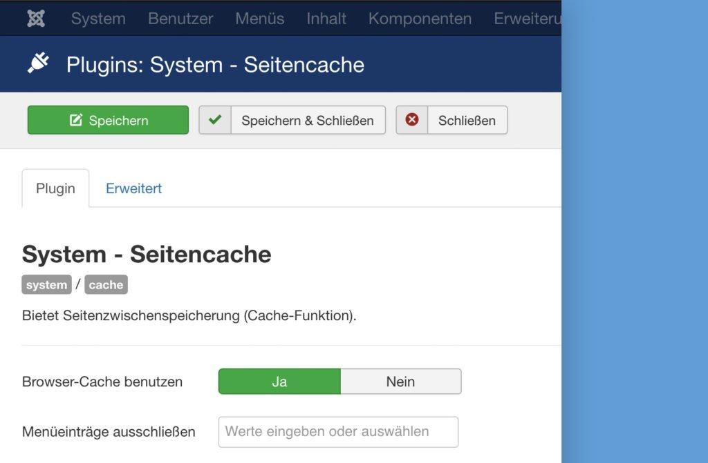 Abbildung - System-Seitencache