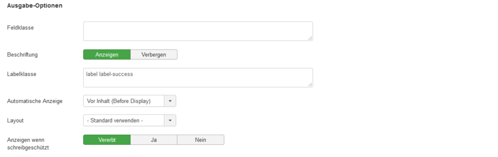 12_screenshot_feld_optionen_klasse_ausgabe1_frontend