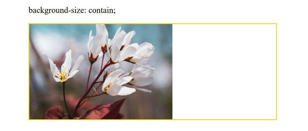 Abbildung - Responsive Bilder in Joomla - Background-Size contain