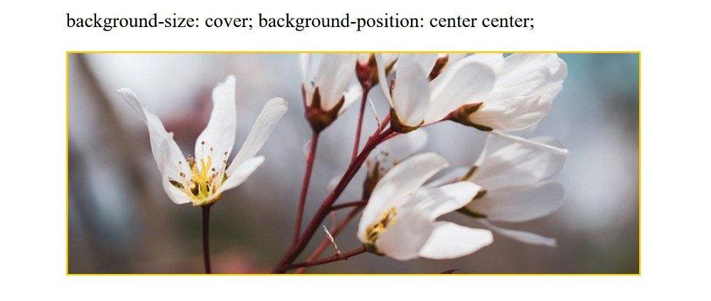 Abbildung - Responsive Bilder in Joomla - background-size: cover; background-position:center center;