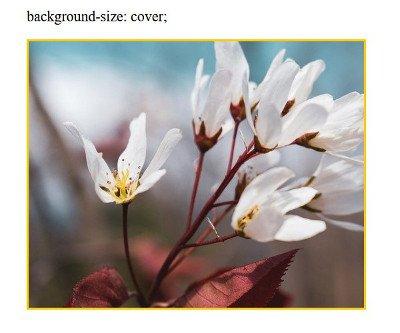 Abbildung - background-size:cover;